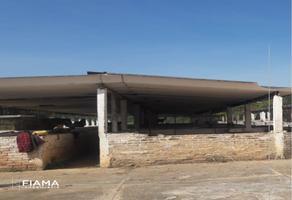 Foto de rancho en renta en  , san pedro lagunillas centro, san pedro lagunillas, nayarit, 13989131 No. 01