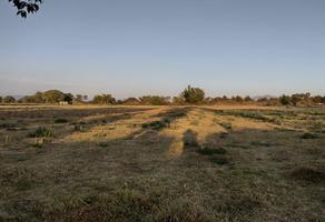 Foto de terreno comercial en venta en san pedro pareo 0, san pedro, aguascalientes, aguascalientes, 0 No. 01