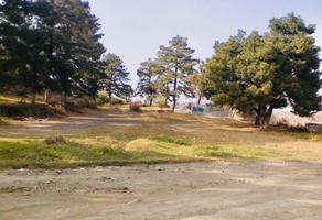 Foto de terreno habitacional en venta en  , san pedro, tlalmanalco, méxico, 10773577 No. 01