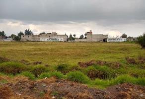 Foto de terreno habitacional en venta en san pedro totoltepec , san pedro totoltepec, toluca, méxico, 0 No. 01