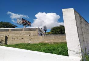 Foto de terreno comercial en venta en  , san pedro uxmal, mérida, yucatán, 0 No. 01