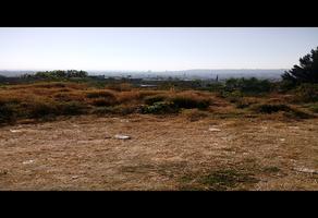 Foto de terreno habitacional en venta en  , san rafael, la piedad, michoacán de ocampo, 14038490 No. 01