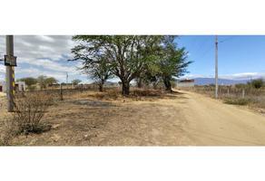 Foto de terreno habitacional en venta en  , san raymundo jalpan, san raymundo jalpan, oaxaca, 0 No. 01