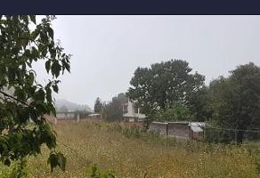 Foto de terreno habitacional en venta en  , san salvador cuauhtenco, milpa alta, df / cdmx, 10786649 No. 01