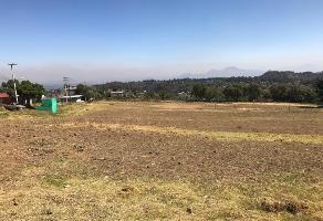 Foto de terreno industrial en venta en san salvador cuauhtenco , san salvador cuauhtenco, milpa alta, df / cdmx, 10124223 No. 01