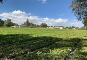 Foto de terreno habitacional en venta en  , san salvador huixcolotla, san salvador huixcolotla, puebla, 16140631 No. 01