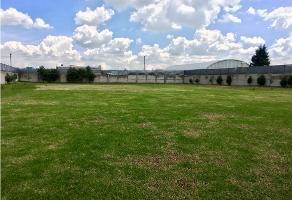 Foto de terreno habitacional en venta en  , barrio san gabriel, toluca, méxico, 9316736 No. 01