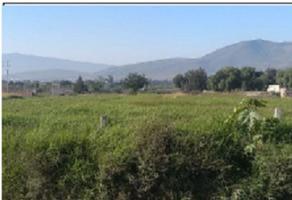 Foto de terreno comercial en venta en san sebastián el grande , san sebastián el grande, tlajomulco de zúñiga, jalisco, 0 No. 01