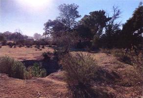 Foto de terreno habitacional en venta en  , san sebastián el grande, tlajomulco de zúñiga, jalisco, 0 No. 01