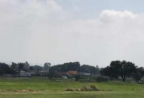Foto de terreno comercial en venta en jardines san sebastian , san sebastián el grande, tlajomulco de zúñiga, jalisco, 8133798 No. 01