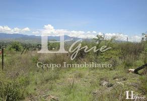 Foto de terreno habitacional en venta en san sebastian etla , san pablo etla, san pablo etla, oaxaca, 14264614 No. 01