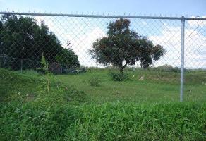 Foto de terreno habitacional en venta en  , san sebastián, león, guanajuato, 7001649 No. 01