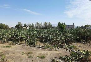 Foto de terreno habitacional en venta en  , san sebastián xolalpa, teotihuacán, méxico, 0 No. 01