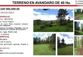 Foto de terreno habitacional en venta en san simón el alto , avándaro, valle de bravo, méxico, 0 No. 01