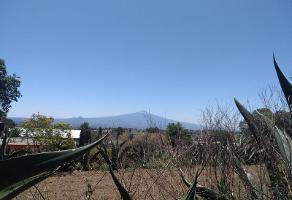 Foto de terreno habitacional en venta en  , san simón tlatlahuquitepec, xaltocan, tlaxcala, 11707130 No. 01