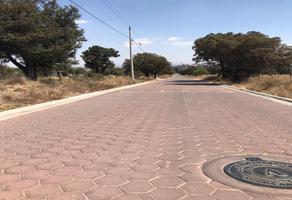 Foto de terreno habitacional en venta en  , san simón tlatlahuquitepec, xaltocan, tlaxcala, 0 No. 01