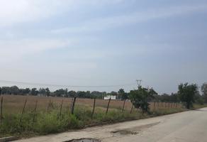 Foto de terreno habitacional en renta en  , santa amalia, altamira, tamaulipas, 13223618 No. 01