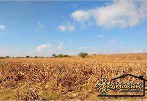 Foto de terreno comercial en venta en santa ana coatepec 217, santa ana coatepec, huaquechula, puebla, 18920387 No. 01