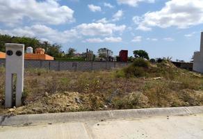 Foto de terreno habitacional en venta en  , santa catarina, tuxpan, michoacán de ocampo, 9523975 No. 01
