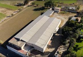 Foto de nave industrial en venta en  , santa anita, tlajomulco de zúñiga, jalisco, 6701280 No. 01