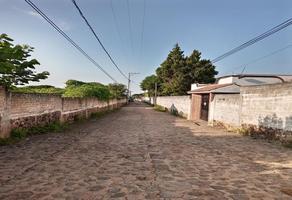 Foto de terreno habitacional en venta en santa barbara 1, san marcos, totolapan, morelos, 0 No. 01