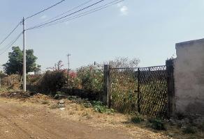 Foto de terreno habitacional en venta en santa barbara 1102, santa bárbara, cuautla, morelos, 0 No. 01
