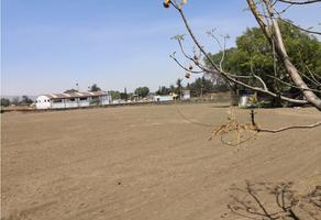Foto de terreno habitacional en venta en  , santa catarina ayotzingo, chalco, méxico, 0 No. 01