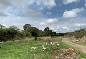 Foto de terreno habitacional en venta en  , santa catarina tlaltempan, santa catarina tlaltempan, puebla, 5984513 No. 01