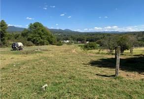 Foto de terreno habitacional en venta en  , santa cecilia acatitlán, tlalnepantla de baz, méxico, 0 No. 01