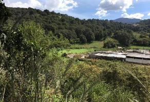 Foto de terreno habitacional en venta en santa cecilia tepetlapa sin número , santa cecilia tepetlapa, xochimilco, df / cdmx, 0 No. 01