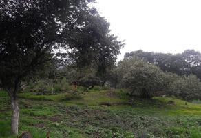 Foto de terreno habitacional en venta en  , santa cecilia tepetlapa, xochimilco, df / cdmx, 0 No. 01