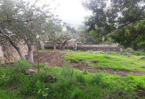 Foto de terreno habitacional en venta en  , santa cecilia tepetlapa, xochimilco, df / cdmx, 18527360 No. 01