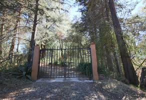 Foto de terreno habitacional en venta en  , santa clara del cobre, salvador escalante, michoacán de ocampo, 19967388 No. 01