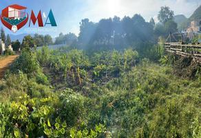 Foto de terreno habitacional en venta en  , santa cruz amilpas, santa cruz amilpas, oaxaca, 0 No. 01