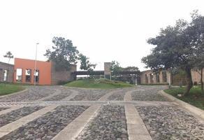 Foto de terreno habitacional en venta en  , santa cruz del astillero, el arenal, jalisco, 7925566 No. 01