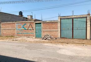 Foto de terreno habitacional en venta en santa cruz , la conchita, chalco, méxico, 0 No. 01