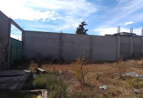 Foto de terreno habitacional en venta en santa cruz manzana 3, lt.4, zona , santa cruz amalinalco, chalco, méxico, 19349697 No. 01