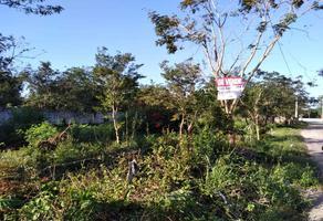 Foto de terreno habitacional en venta en  , santa cruz, tizimín, yucatán, 0 No. 01