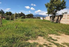 Foto de terreno habitacional en venta en  , santa cruz xoxocotlan, santa cruz xoxocotlán, oaxaca, 16328953 No. 01