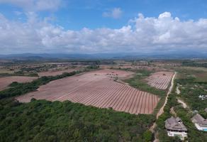 Foto de terreno habitacional en venta en  , santa elena (el puertecito), santa maría colotepec, oaxaca, 17677418 No. 01