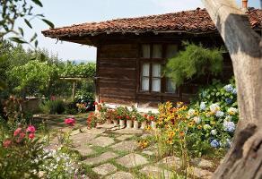 Foto de terreno habitacional en venta en  , santa elena, pueblo viejo, veracruz de ignacio de la llave, 11927340 No. 01