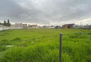 Foto de terreno habitacional en venta en  , santa elena, san mateo atenco, méxico, 0 No. 01