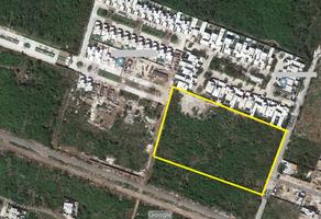 Foto de terreno habitacional en renta en  , santa gertrudis copo, mérida, yucatán, 13971715 No. 01