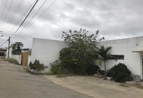 Foto de terreno habitacional en renta en  , santa gertrudis copo, mérida, yucatán, 0 No. 01