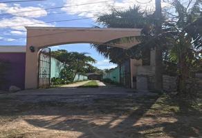 Foto de local en venta en  , santa gertrudis copo, mérida, yucatán, 0 No. 01