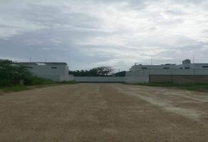 Foto de terreno habitacional en venta en santa gertrudis copo whi267888, santa gertrudis copo, mérida, yucatán, 19801121 No. 01