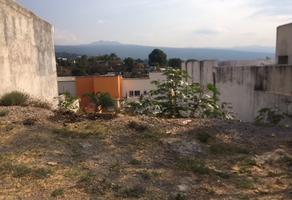 Foto de terreno habitacional en venta en santa irene , ahuatlán tzompantle, cuernavaca, morelos, 0 No. 01