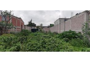 Foto de terreno habitacional en venta en  , santa isabel nepantla, tultepec, méxico, 0 No. 01