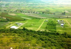 Foto de terreno habitacional en venta en santa lucia 7778, santa lucia cosamaloapan, atlixco, puebla, 0 No. 01