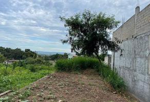 Foto de terreno habitacional en venta en santa maria 688, linda vista océano, puerto vallarta, jalisco, 0 No. 01